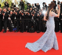 paparazzi-red-carpet-background-9