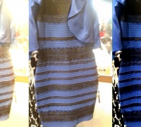 black-blue-gold-white
